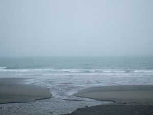 オアクラビーチとフィッツロイの中間くらいのビーチ