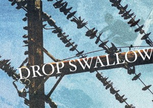 DROPPED SWALLOW